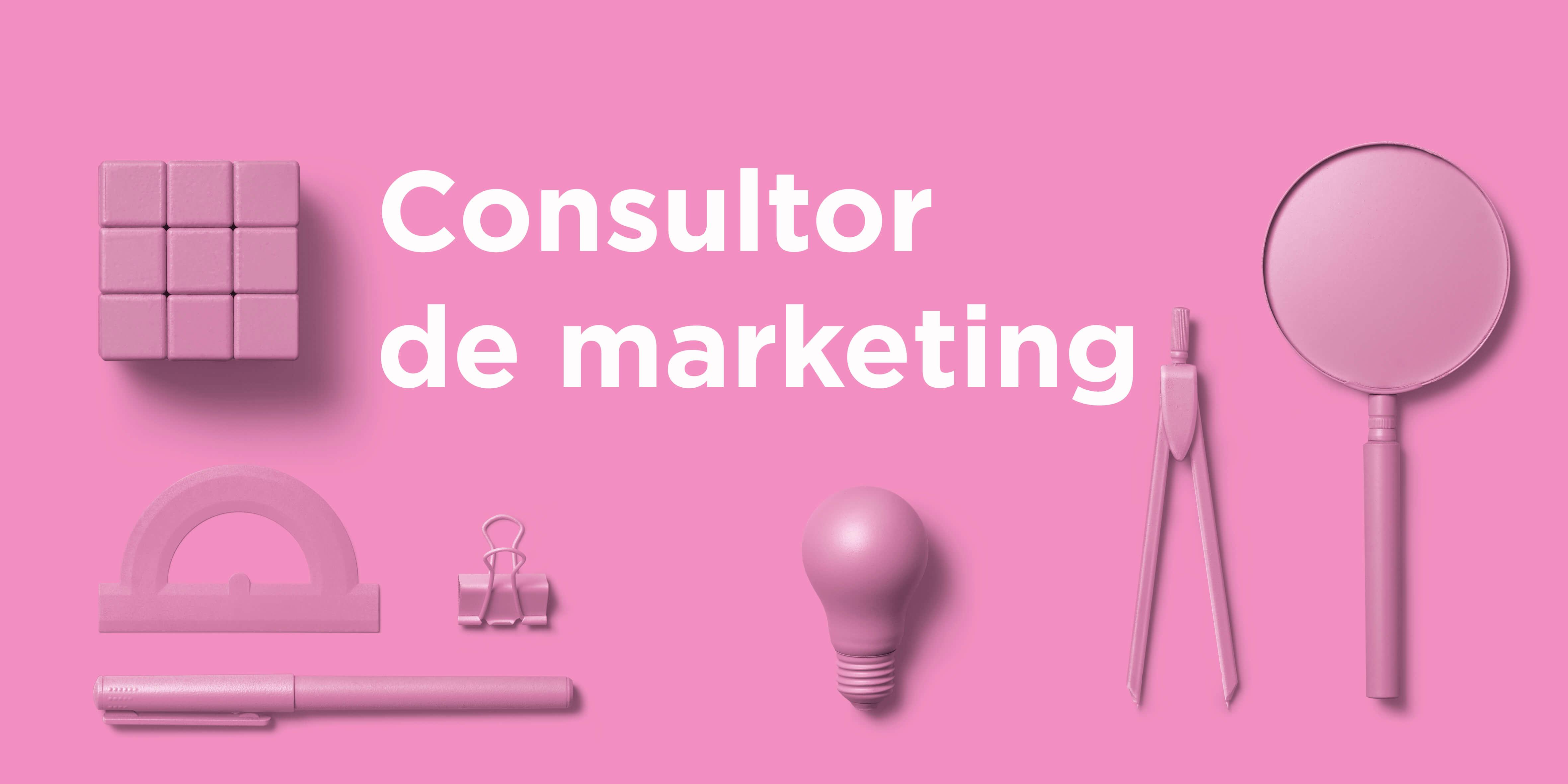 Consultor de marketing tiny