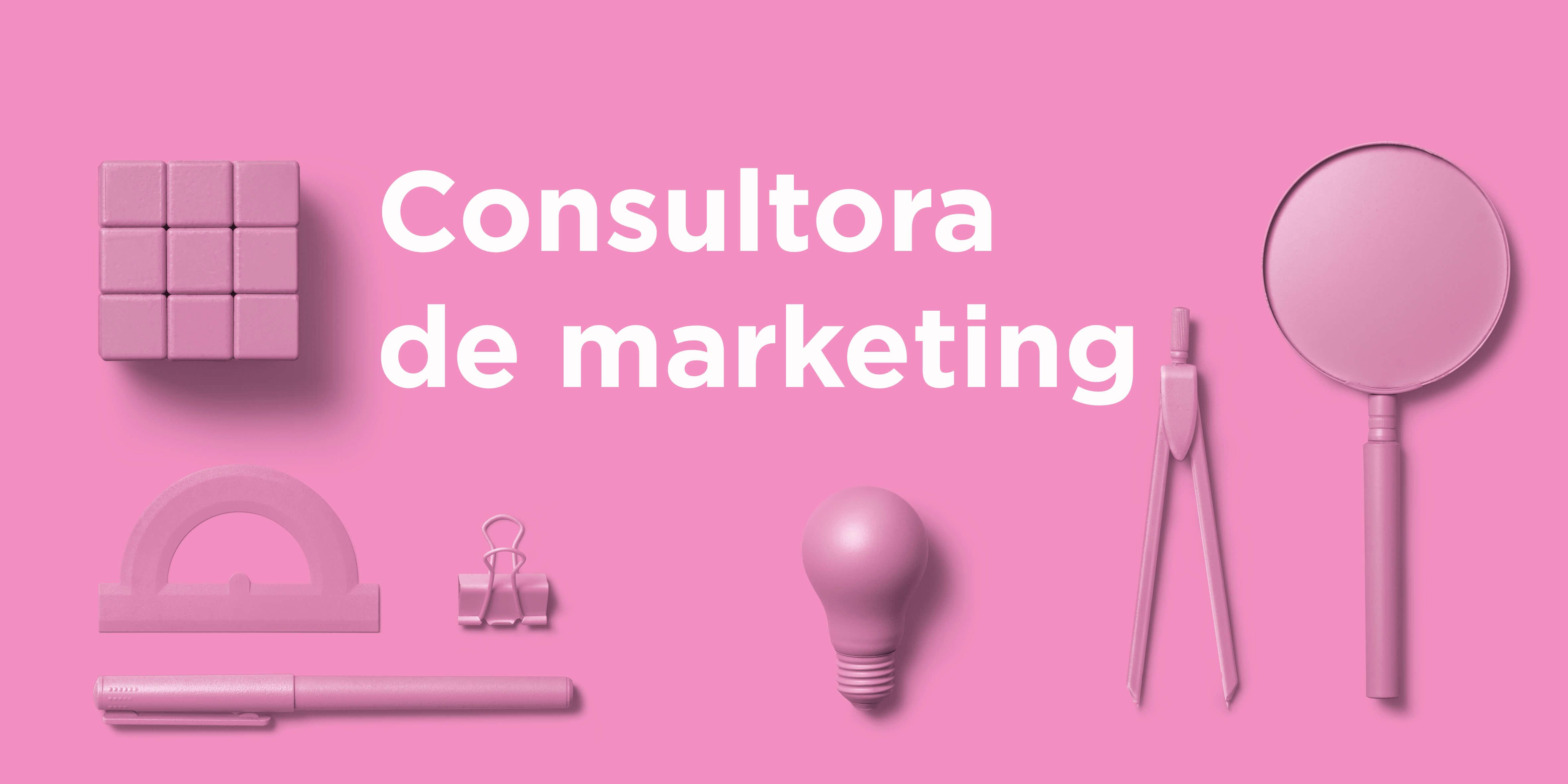 Consultora de marketing tiny